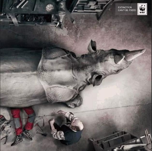 انقراض را نمیتوان تعمیر کرد: WWF